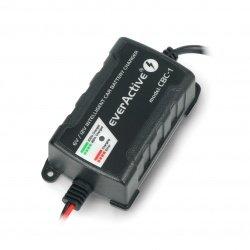 Nabíječka baterií, automatická nabíječka do auta pro 6V / 12V